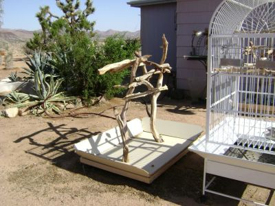 Bird cage and portable perch