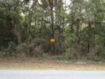 Land for Sale by owner in Old Town, FL