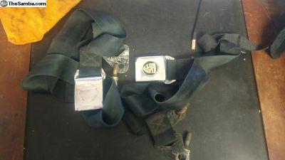 356 seat belts