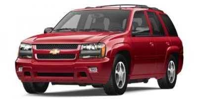 2008 Chevrolet Trailblazer LS (Moondust Metallic)