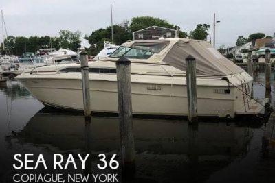 1981 Sea Ray 36