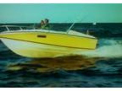 1977 Wellcraft Nova-220 Power Boat in Warren, MI