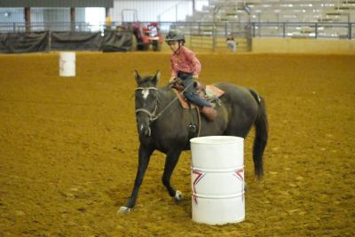 Horse Riding/Lessons on the Circle KRJ Ranch, LLC