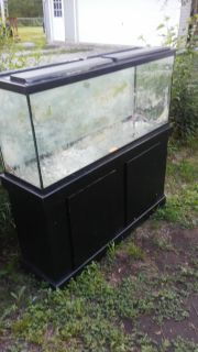 55 gallon tank & stand with accessories