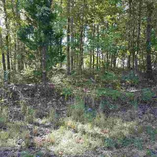 0 Old Sams Creek Rd Lot 228 Pegram, Beautiful 3.02-acre