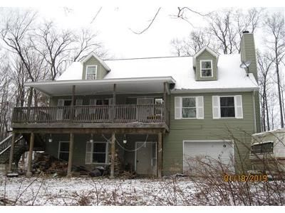 4 Bed 2 Bath Foreclosure Property in Newfoundland, PA 18445 - Sterling Rd