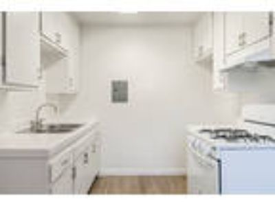 Pacific Avenue Apartments - Two BR Two BA
