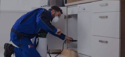 Pest Control Services for Residential, Commercial and Industrial