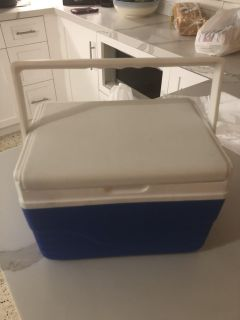 Mini Cooler for Cold Lunch Picnic Snack Beach Etc