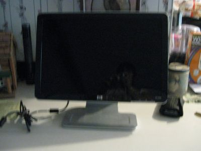 "20"" HP Flat Screen Monitor REDUCED TO $20.00"