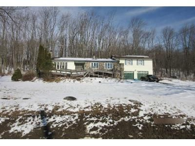 3 Bed 2 Bath Foreclosure Property in Richfield Springs, NY 13439 - Sheridan Rd