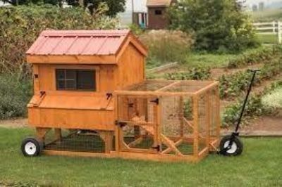 ISO Chicken tractor