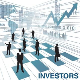 Investor For Business Projects