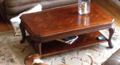 Coffee & end table - great condition