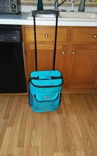 TCL cool carry on wheels n insulated