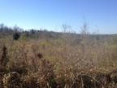 25+ Acres located in Robertsdale!