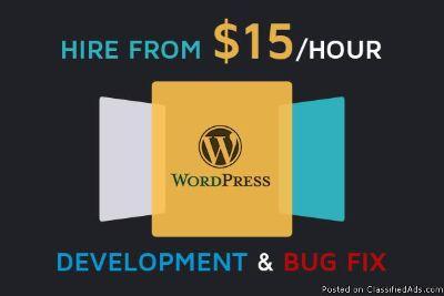 I Will Create Any Wordpress Plugin and do wordpress development services