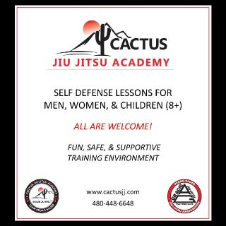 Brazilian Jiu Jitsu / Practical Self Defense