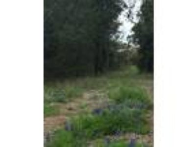 Wooded, quiet, large single-family lot, near NW San Antonio