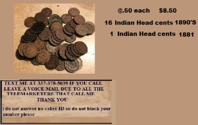 17 Indian Head cents