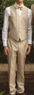 Vest, pants, and bow tie