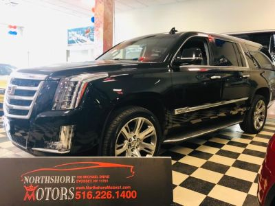 2016 Cadillac Escalade ESV 4WD 4dr Luxury Collection (Black Raven)