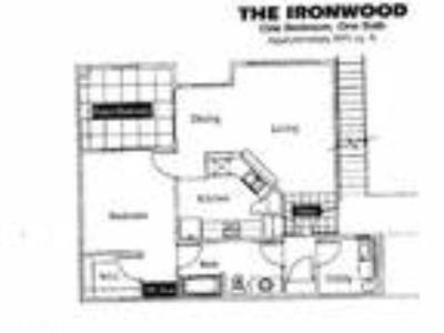 Desert Vista - Ironwood