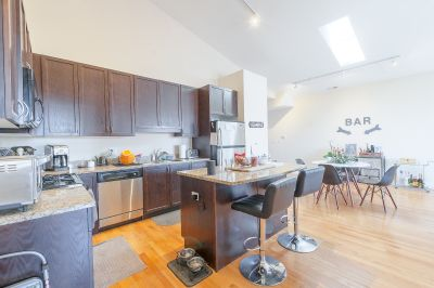 Jaw Dropping Condo Quality Logan Square Duplex - Garage, in Unit W/D