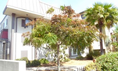 Don't Miss this Centrally Located Townhouse, In the Heart of Hillcrest.
