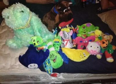 19 Stuffed Animals for Throws Crossposted