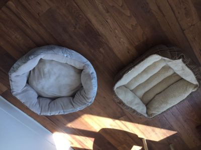 Almost new pet beds .. medium size dogs or cats