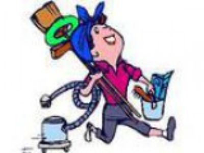 Cleaner Wanted in Ryde Area