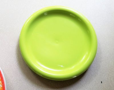 "4 Green 8"" Plastic Plates Large Camping Camper Lime Picnic Outdoor BBQ Cook Out"