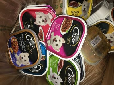 Cesar s Dog Food 50 Containers