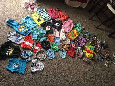 Huge lot of small and xs dog clothes and accessories