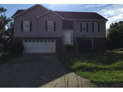 3 Bath Preforeclosure Property in Chatsworth, GA 30705 - Lyndsey Dr