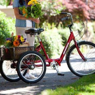 $395 OBO Torker HD Three Wheel Trike- Ex. Cond