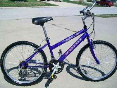 $80 Youth Mountain Bike (Lees Summit)