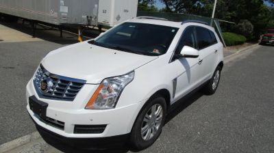 2013 Cadillac SRX Luxury Collection (Platinum Ice Tricoat)