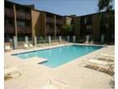 Santa Fe Springs - Celosia