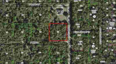10845 E Tree Lane Inverness, 1.07 acres, wooded