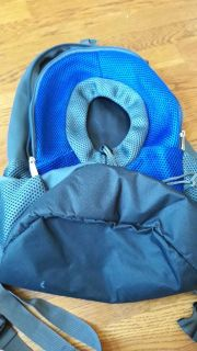 Dog backpack up to 10 lbs