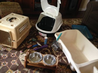 Large Lot of Cat Supplies