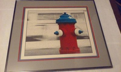 "Fire Hydrant Picture Framed Red White Blue Large 22"" x 19-1/2"""