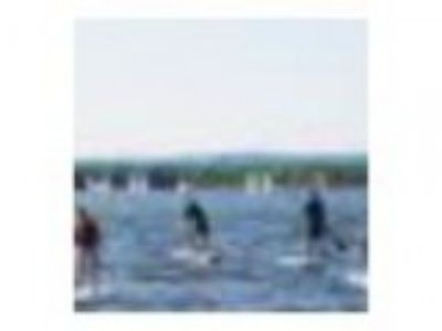 Ottawa River SUP Race