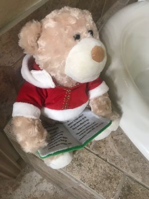 Bear recites 'Twas the Night Before Christmas