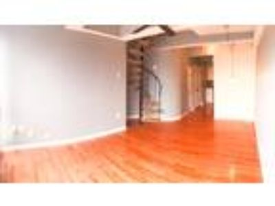 Roommate wanted to share Two BR 1.5 BA Apartment...