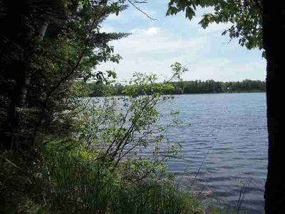 Lot11off BEAVER LODGE RD Mercer, Little Martha Lake - End of