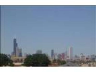 Great Value, Skyline View, Near Downtown and McCormick Place - HOT TUB!