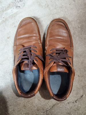 Aldo shoes 11.5 size